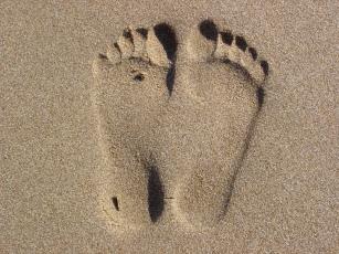 footprint-1580660-1280x960